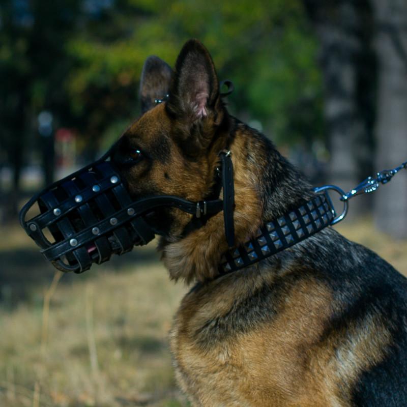 Bozal de cuero para perro Pastor alemán «Máxima seguridad» - M41